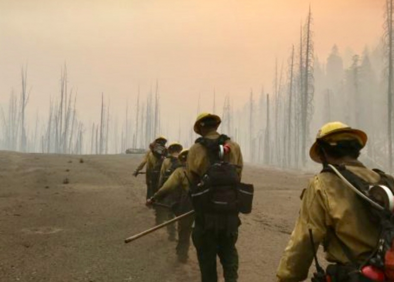 Donnell Fire Hand Crew.