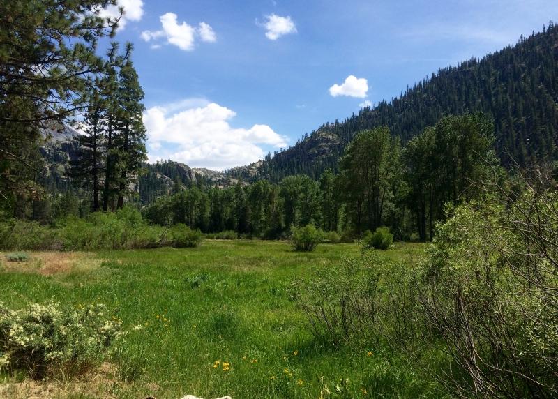 Kennedy Meadow.